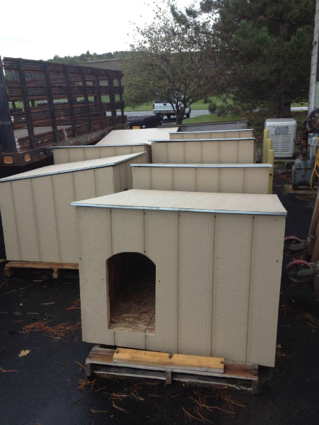 pawsofrochestershelters-1