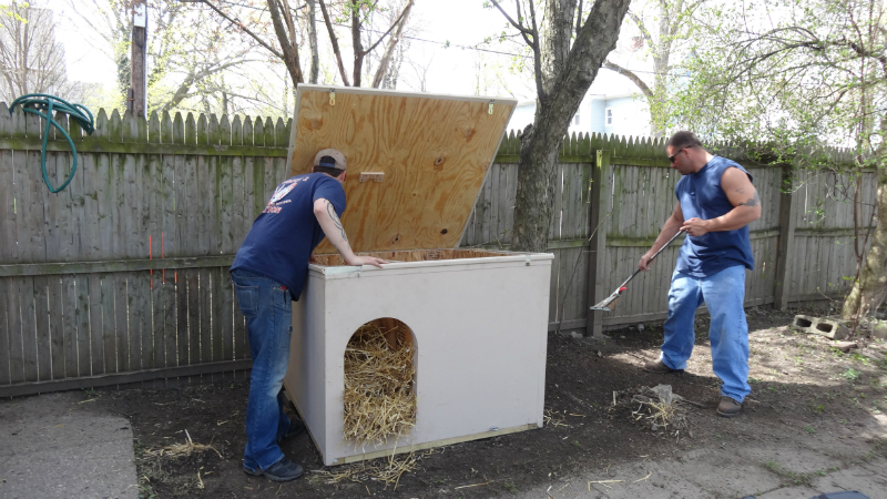 pawsofrochestershelters-3