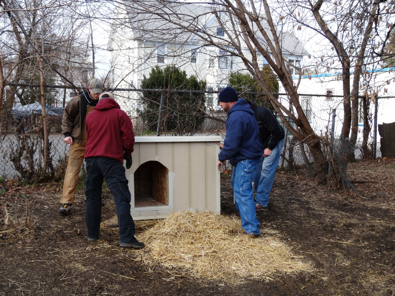 pawsofrochestershelters-8
