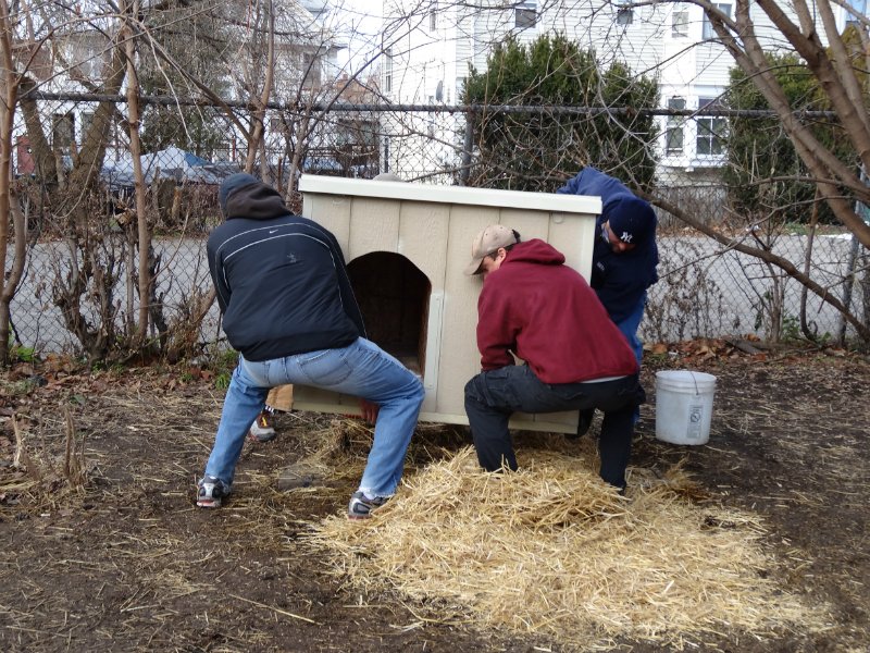 pawsofrochestershelters-9